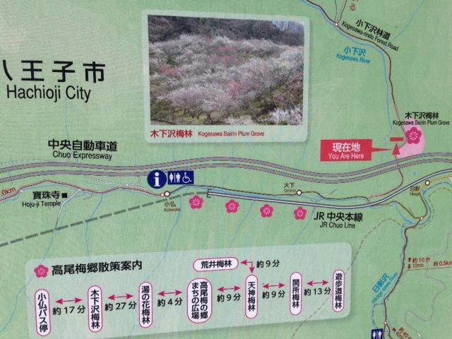 木下沢梅林_高尾梅郷散策案内図